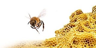 Beeswax - candlesmaterial